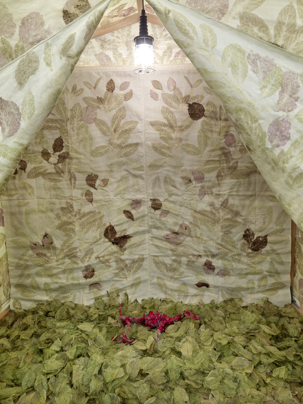 Wall tent pattern wall tent designs with wall tent for Wall tent pattern
